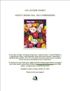 Vesey's Bulbs Fall 2013 Fundraiser