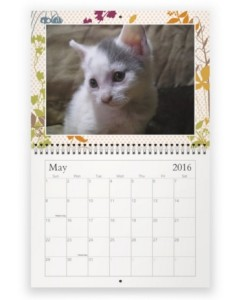 Screen Capture May 2016 CAT Calendar