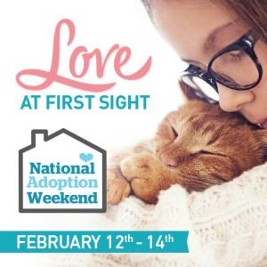Pet Valu National Adoption Weekend