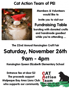 cat-kensington-craft-fair