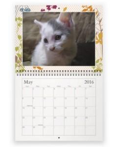 Screen Capture May 2016 CAT Calendar