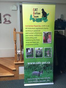 Cat Action Team Banner Bug